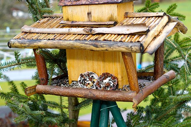 Cupcakes im Vogelhäuschen