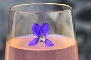 Prosecco mit Veilchensirup und Blüte