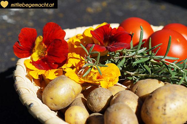 Frisch geerntete Kartoffeln, Tomaten, Kapuzinerkresse