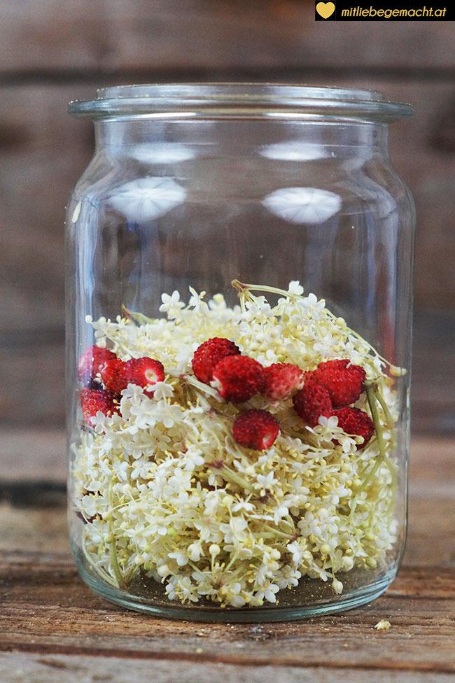 Holunder und Erdbeeren ins Glas füllen
