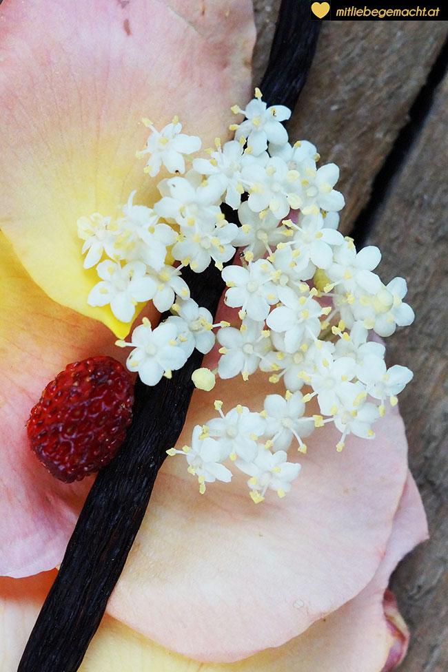 Zutaten Holunderblütenessig