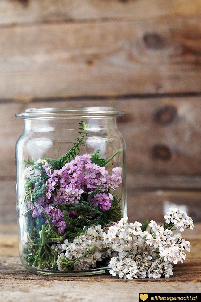 Blüten und Blätter in ein Glas geben