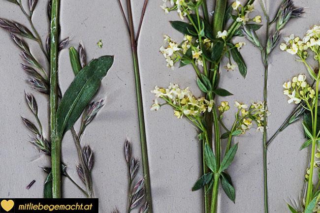 Blumen und Gräser sollen gut festgedrückt sein