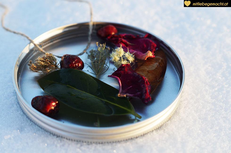 Früchte und Blätter anordnen - Winter DIY