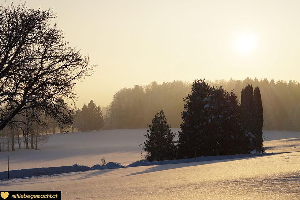 Die Tage werden langsam länger und man spürt die Kraft des kommenden Frühlings - das ist auch ein Thema bei Mariä Lichtmess