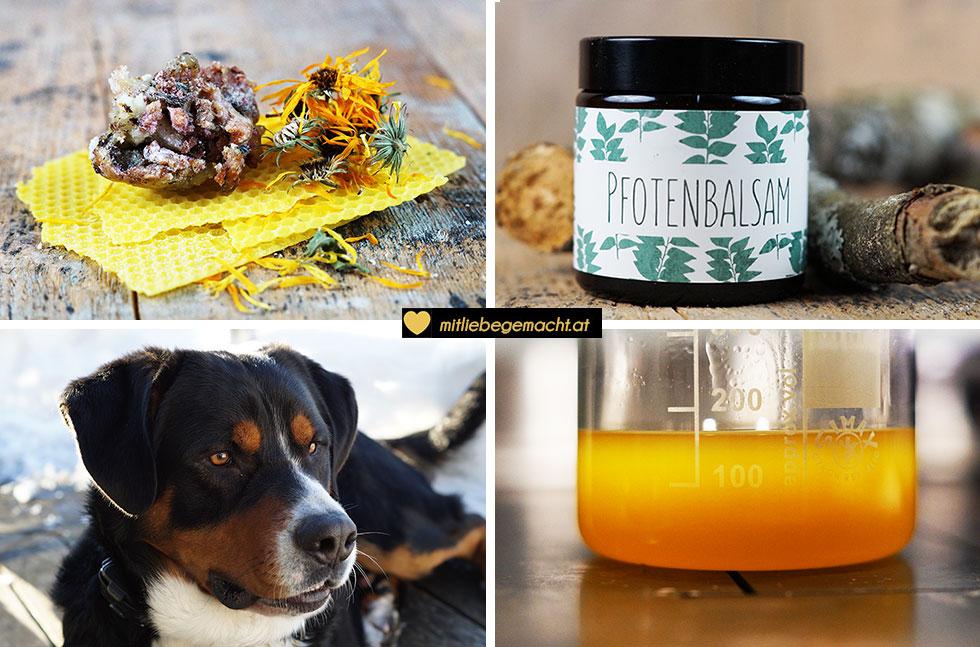 Pfotenbalsam selber machen - natürliche Pflege für Hunde