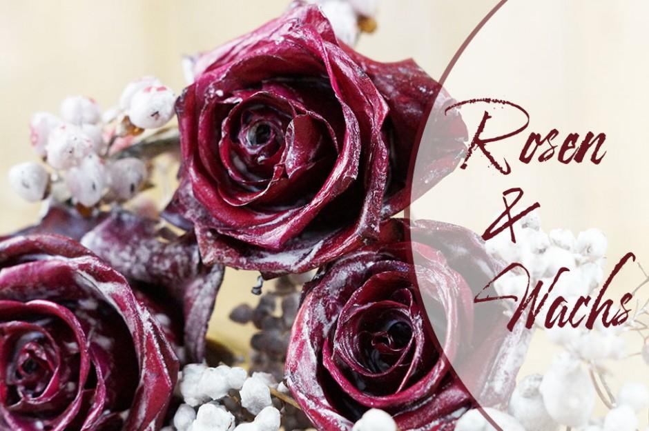 wie du aus kerzenresten rosen haltbar machen kannst. Black Bedroom Furniture Sets. Home Design Ideas