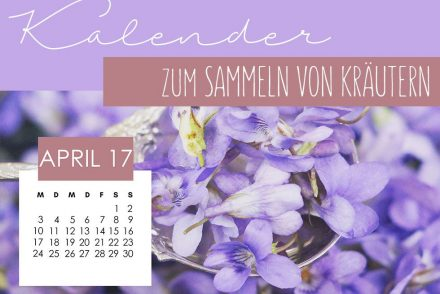 Kräutersammelkalender April