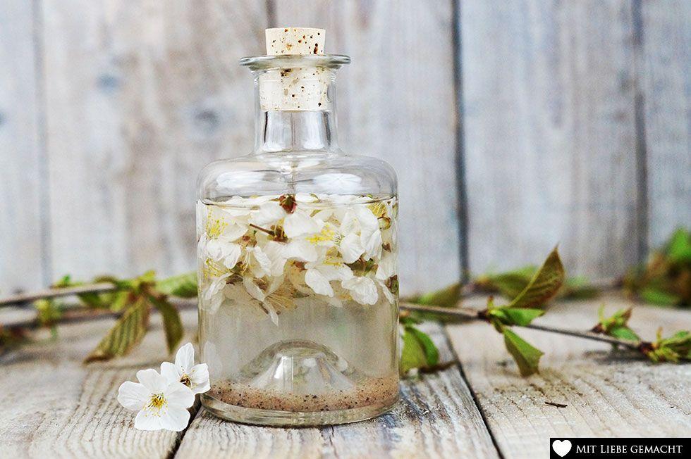 Kirschblüten mit destilliertem Wasser auffüllen