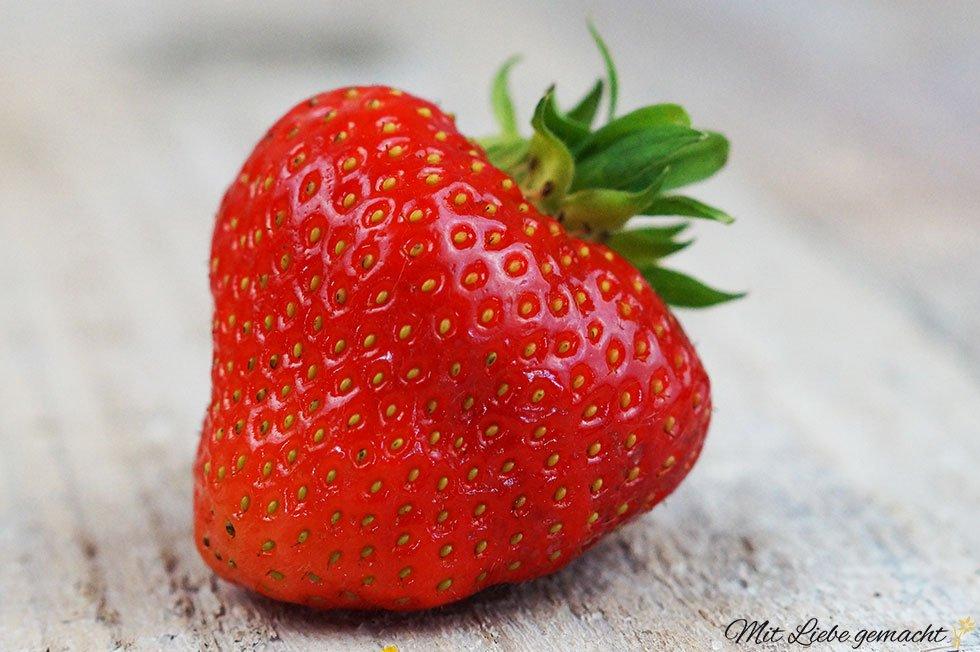 Kraftpaket Erdbeere