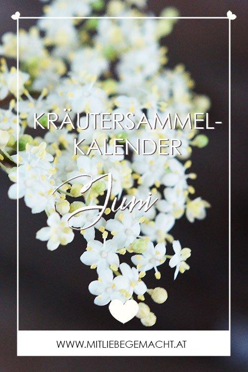 Kräuterkalender Juni