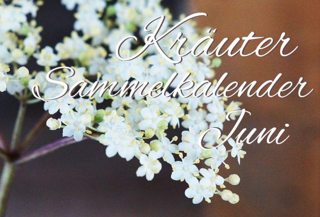 Kräutersammelkalender Juni
