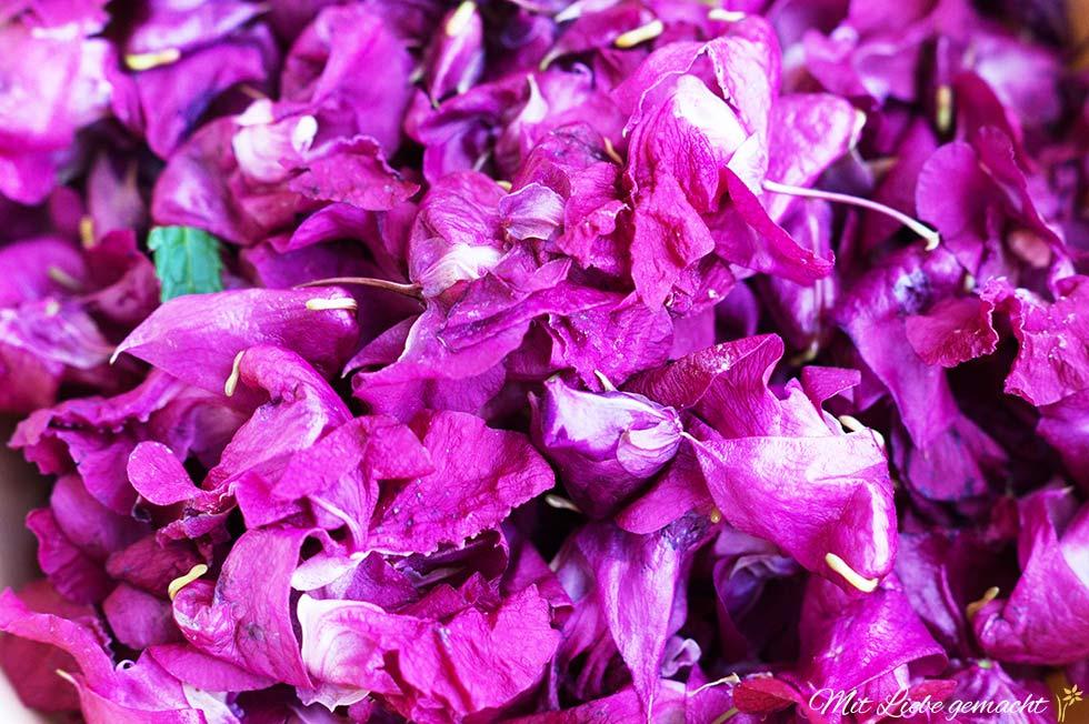 gesammelte Springkrautblüten