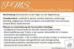 PMS Lernkarte