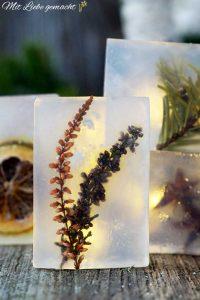 Blüten, Zweige, Gewürze...