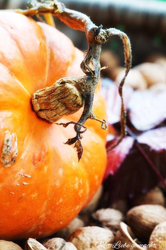 Kürbis - herrliches Herbstgemüse