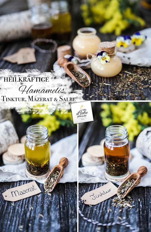 Heilkräftige Hamamelis - so entsteht eine Tinktur, Mazerat und Salbe