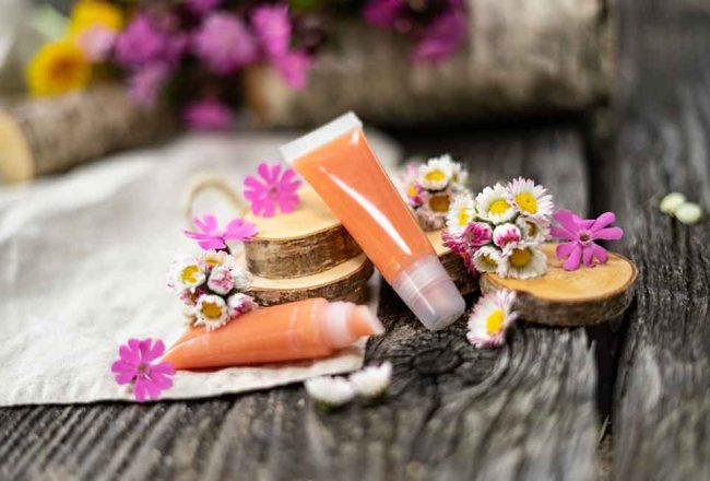 Gänseblümchen Lipgloss selber machen