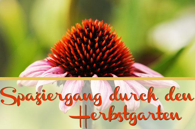Herbstgarten-Header