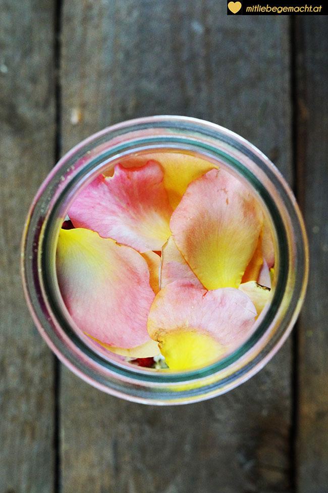 Rosenblüten ins Glas geben