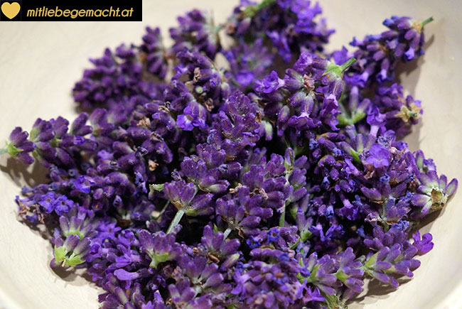 Lavendelblüten von den Stielen befreien