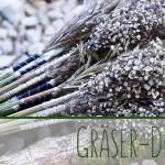 Wilde Schönheiten - Deko aus Gräsern