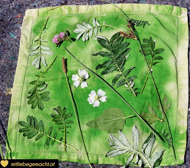 Blätter und Blumen auflegen