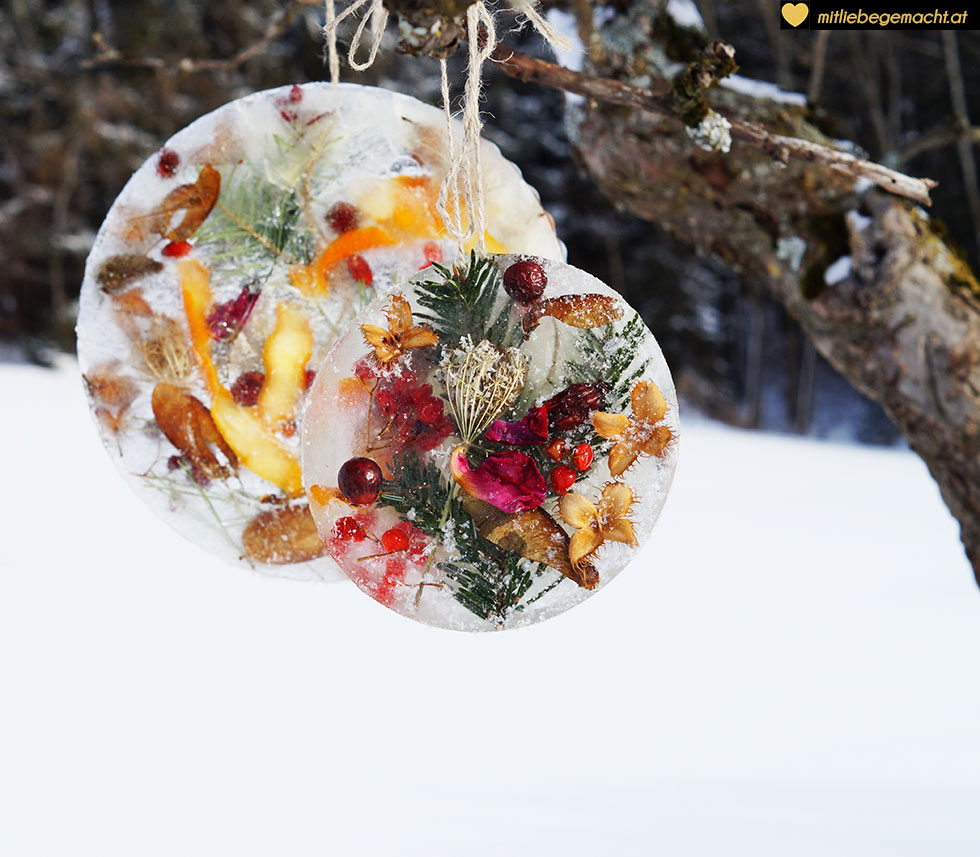 Eismandalas - vergängliche Schönheit