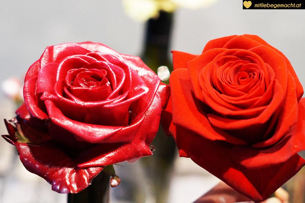 gewachste und echte Rose im Vergleich
