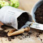 Anzuchttöpfchen aus Zeitungspapier selber machen