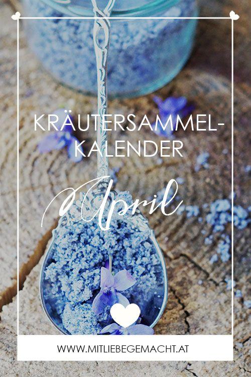 Kräutersammelkalender für den April