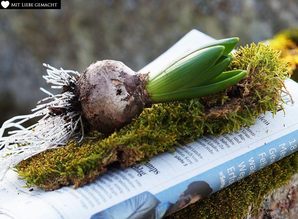 Materialien für die Frühlingsdeko