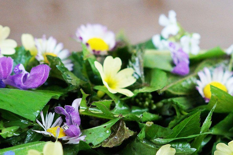 Wildkräutersalat - liefert viele wichtige Nährstoffe