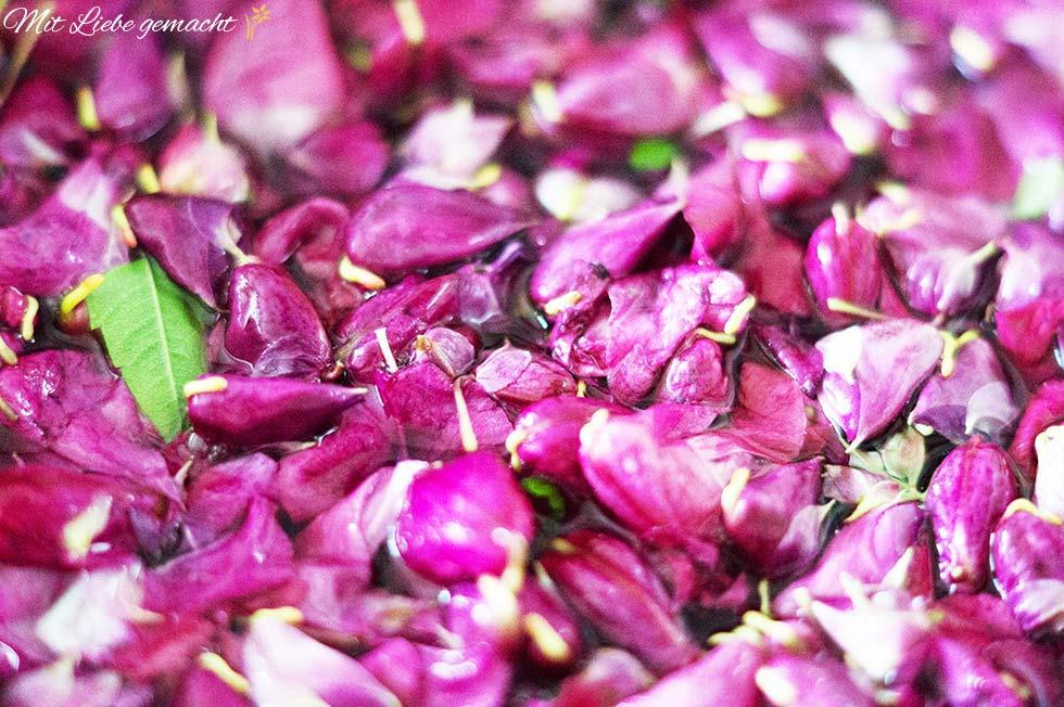 Springkrautblüten mit Kräutern ansetzen