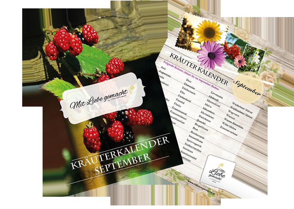 Kräutersammelkalender für den September
