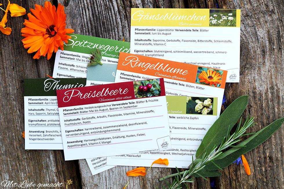Lernkarten für euer Kräuterwissen