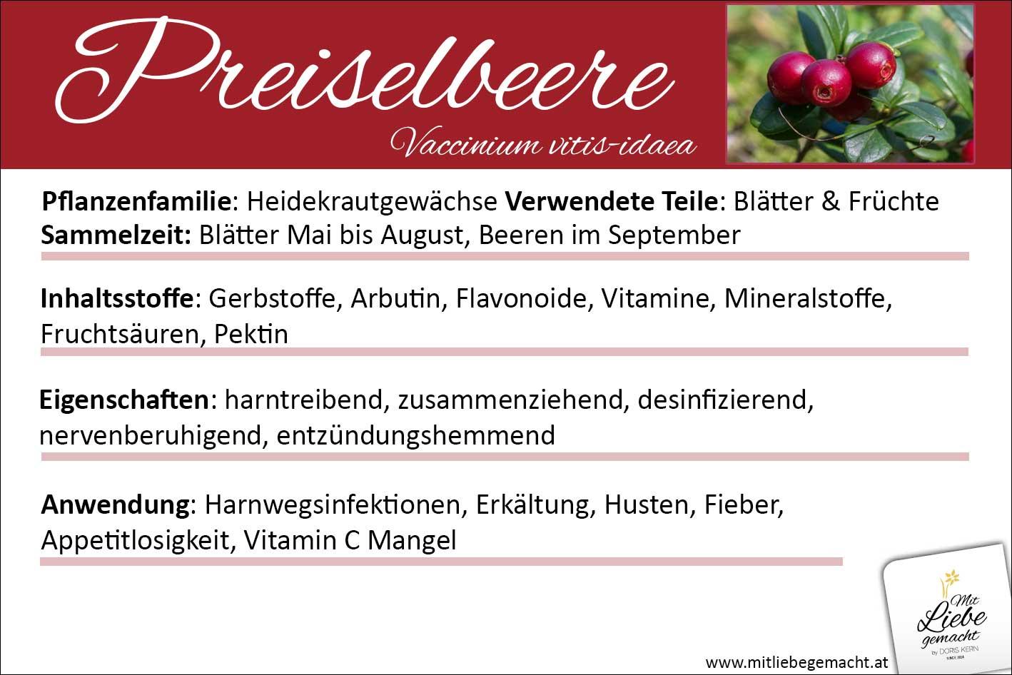 Preiselbeere Lernkarte Kräuterwissen