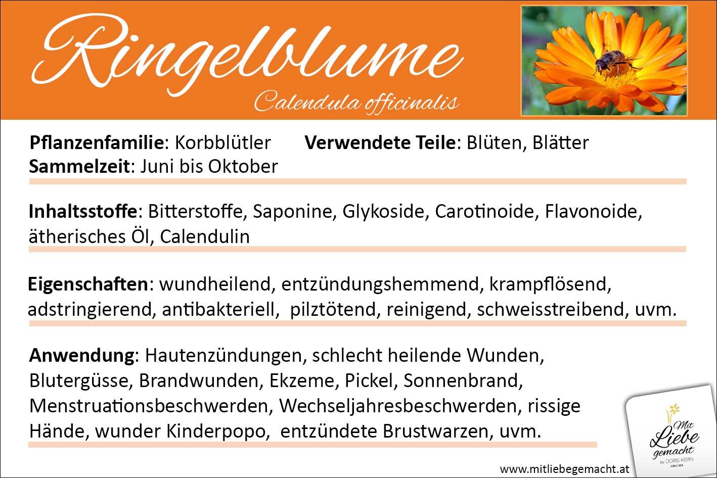 Ringelblume Lernkarte Kräuterwissen