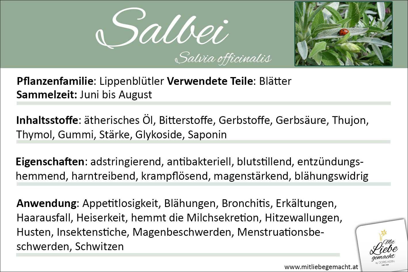 Salbei Lernkarte Kräuterwissen