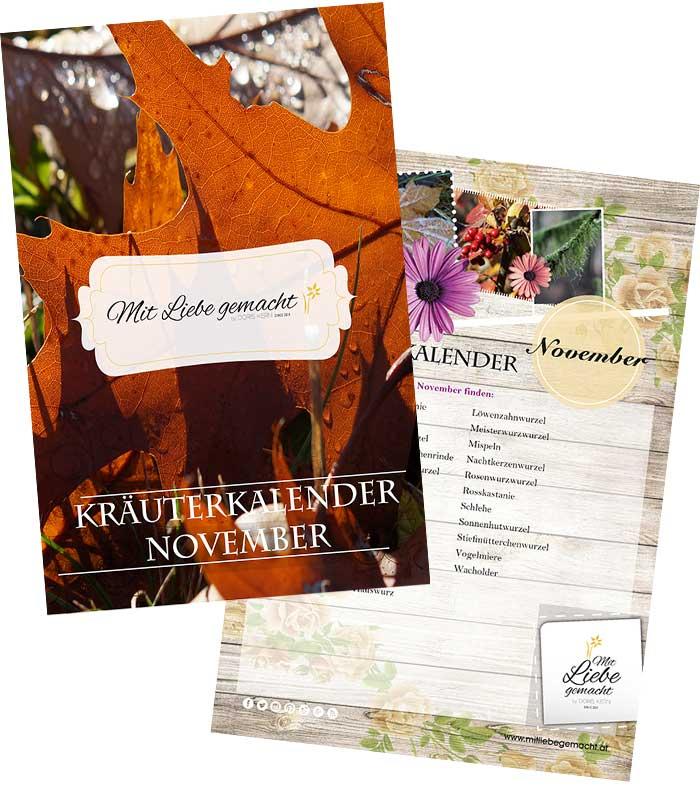 Vorschau Kräutersammelkalender November