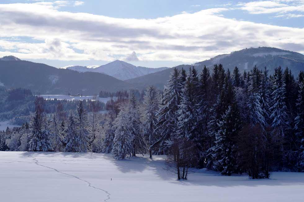 Jänner im weißen Gewand