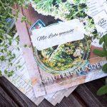 Kräuterkalender - mit der Natur durchs Kräuterjahr