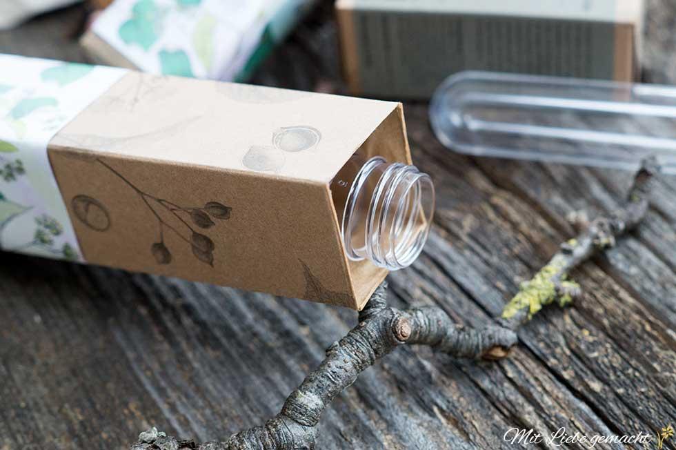 Reagenzglas in Karton geben