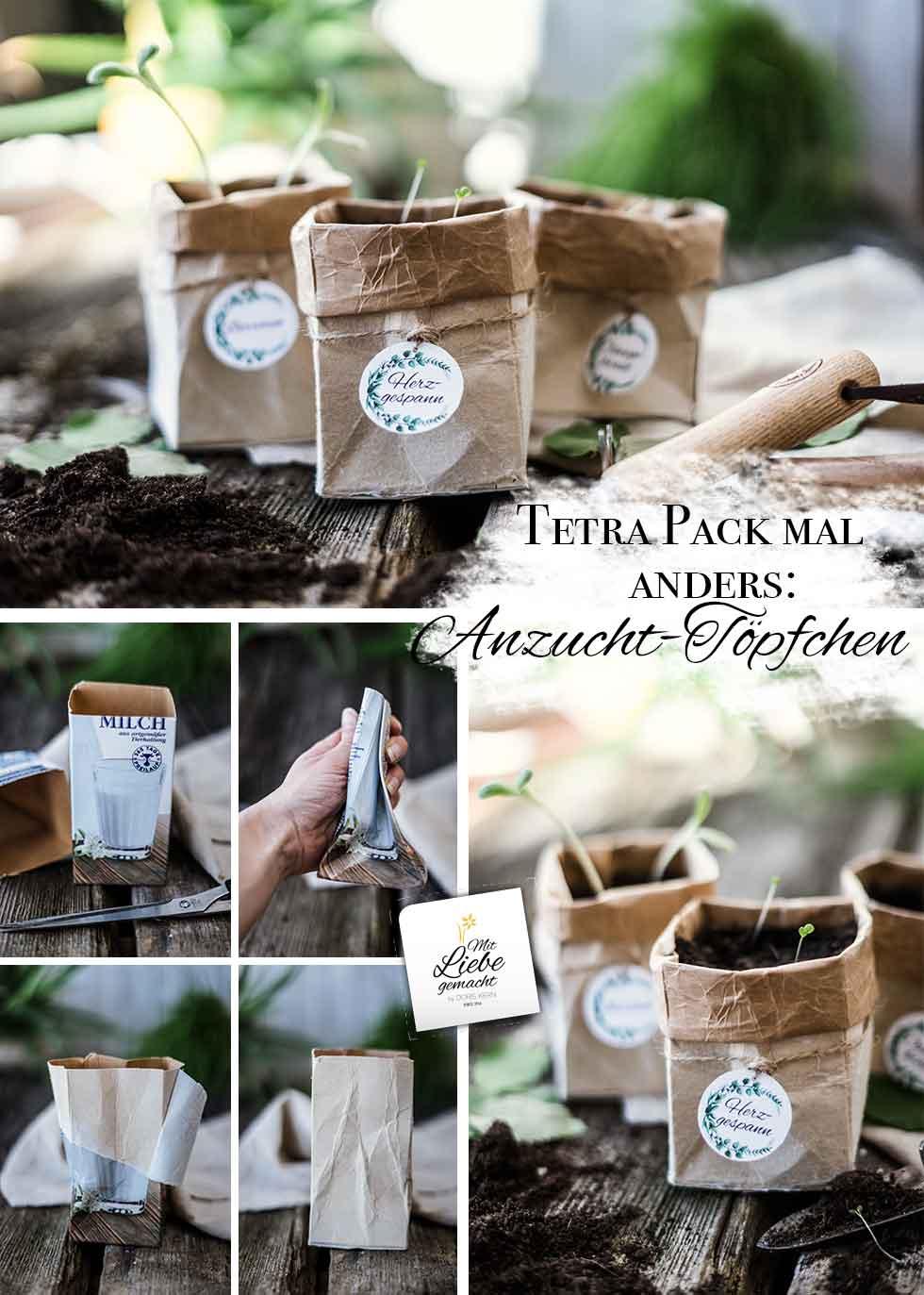 Anzuchttöpfchen aus Tetra Packs