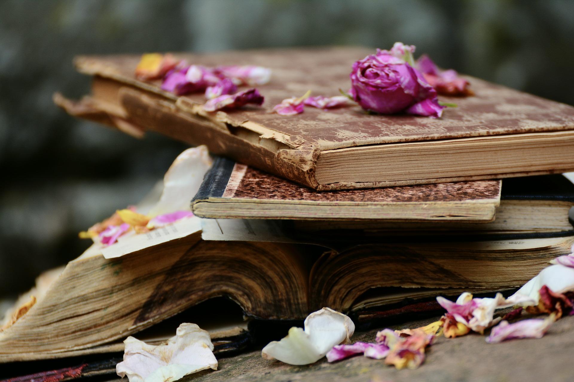 Bücher für die Seele