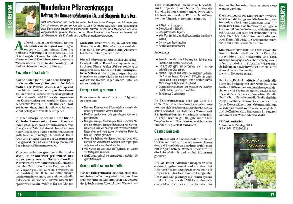 BioBlick Pflanzenknospen Doris Kern