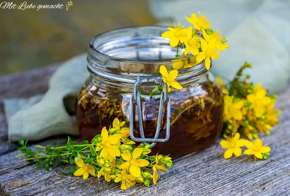 Schätze aus der Natur – Johanniskraut Oxymel