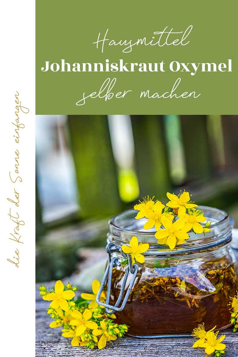 Johanniskraut Oxymel selber machen